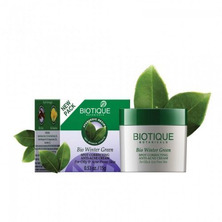 Крем для лица против угрей и прыщей, Bio Winter Green Biotique, 15 г