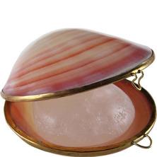 Кристалл в натуральной тихоокеанской раковине Деонат, 65 г