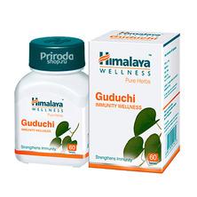 Гудучи (Иммуно-стимулятор), Guduchi Himalaya, 60 таб.